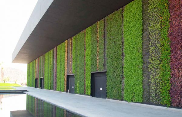 muros-verdes